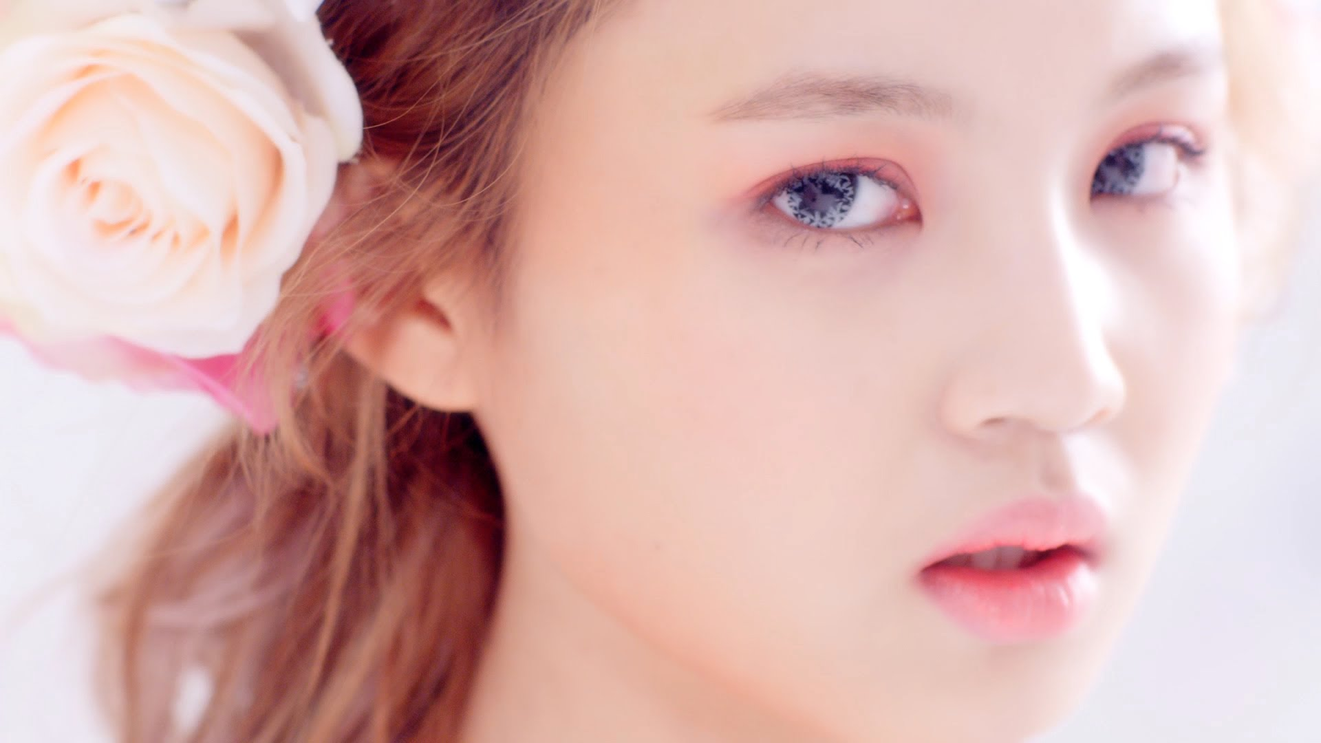 Lee Hi Rose Club Corbeille
