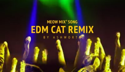 meow mix song edm cat remix by a
