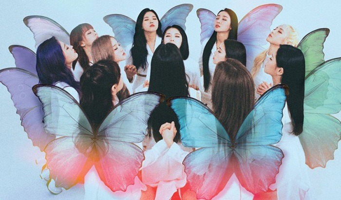 loona butterfly